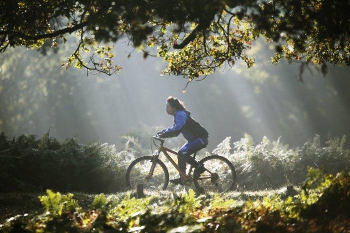 Κοπέλα κάνει ποδήλατο υπό το φως των πρώτων ακτίνων του φθινοπωρινού ήλιου, σε πάρκο του Λονδίνου