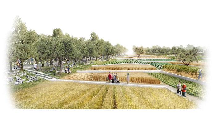 Αποψη της διάταξης της περιοχής αστικής καλλιέργειας