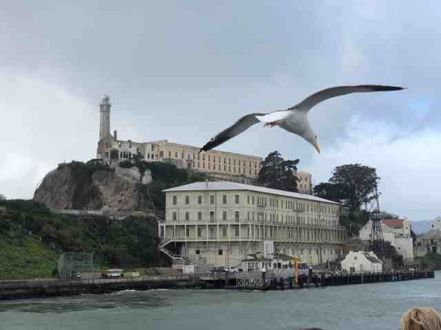 Alcatraz Prison is one of the unique places to visit in san francisco and san francisco visiting places
