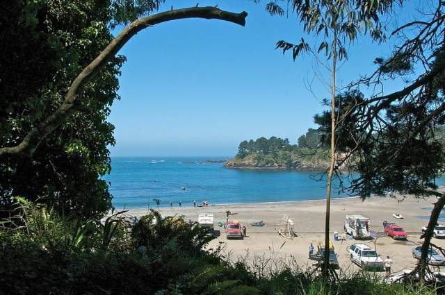Van Damme State Park - best campsites california. best camping ca