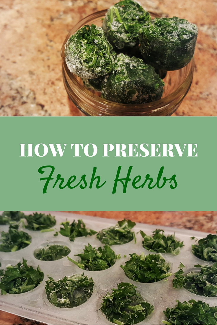The Easiest Way to Preserve Herbs