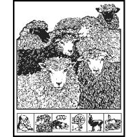 Black Sheep Gathering