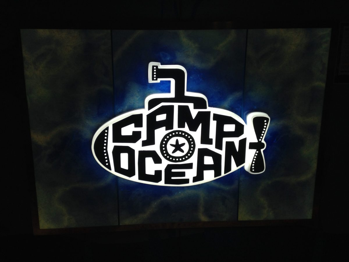 Camp Ocean Review on Carnival Cruise Lines and 5 Must Know Tips