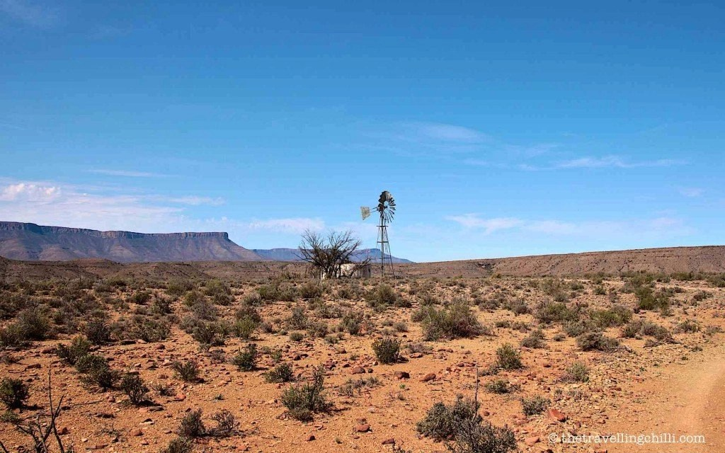 Karoo landscape windmill south africa