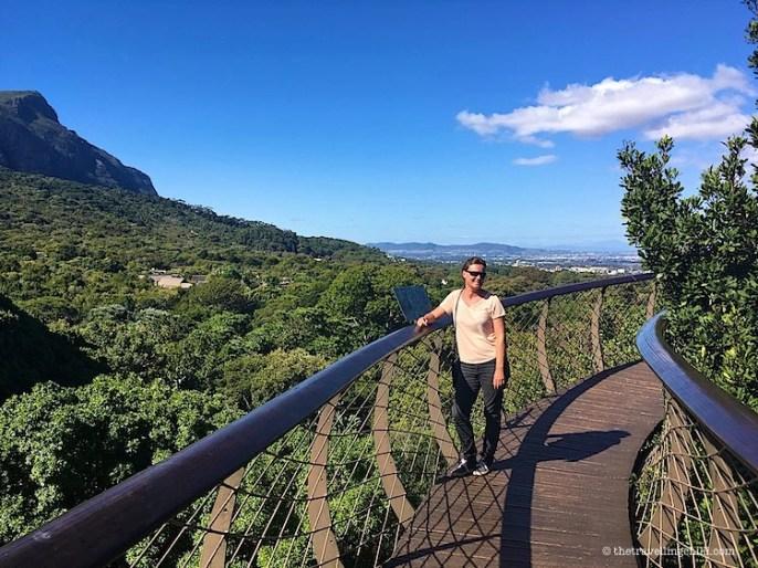 Kirstenbosch gardens boardwalk