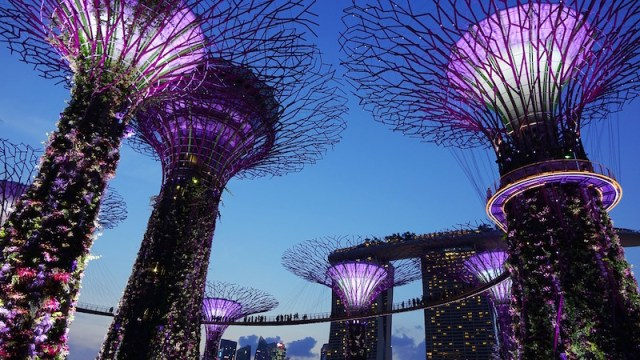 free walking tour in singapore garden by the bay