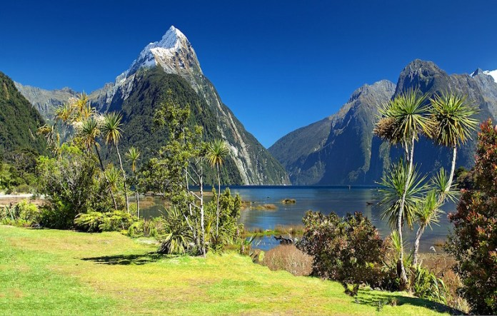 new zealand tourist visa mitre peak