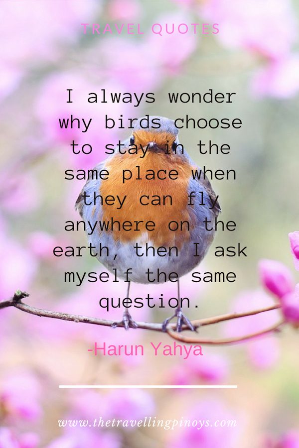 50 Quotes About Wanderlust That Will Inspire You To Travel   Best Travel Quotes   Quotes About Travel   Wanderlust Quotes   Inspirational Quotes #inspiration #travelquotes #travel #travelinspiration
