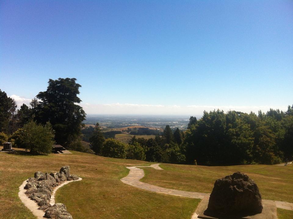 View above Christchurch