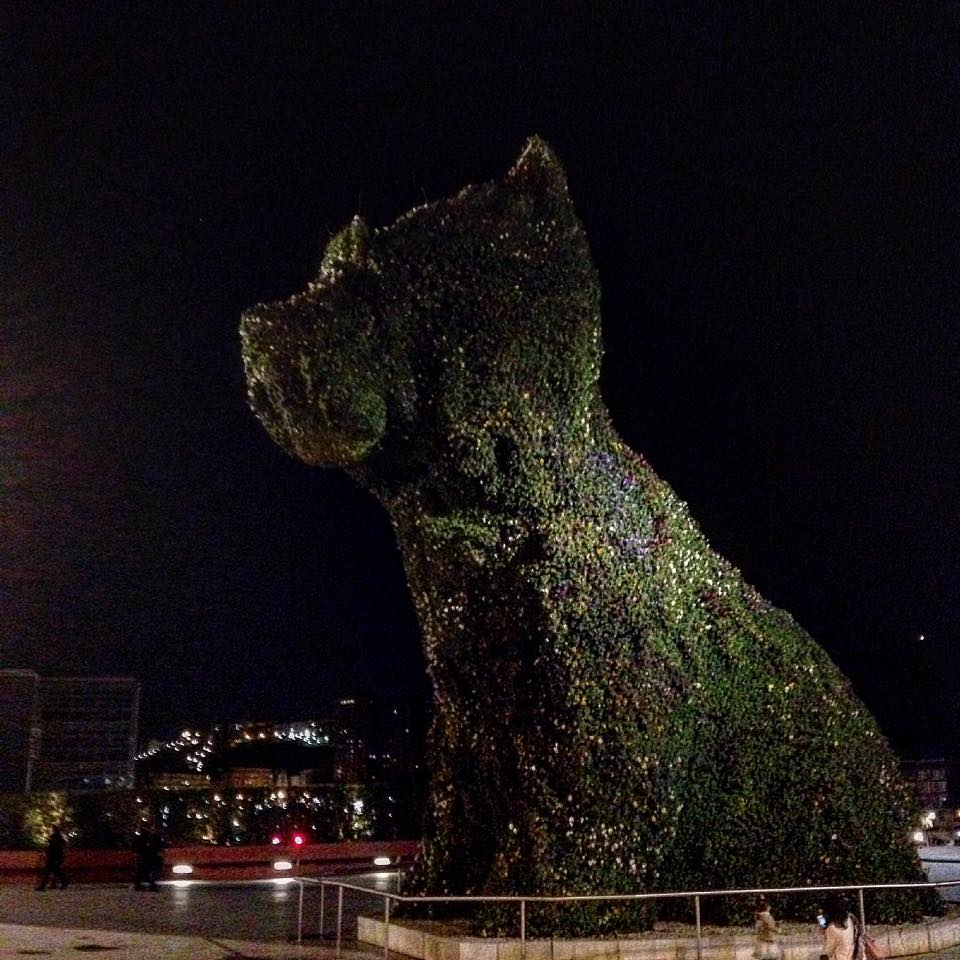 Big dog in Bilbao