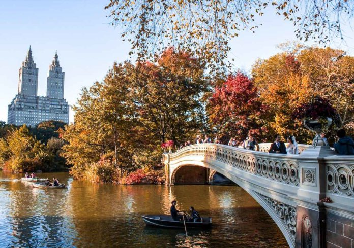 Upstate New York Fall Hd Wallpaper Central Park Walking Tour With Jk Nyc Tours