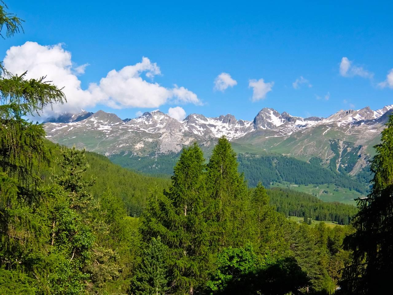 View from Pontresina  Over the Alps via Gotthard Bernina Circular Tour on the Bernina Express View from Pontresina