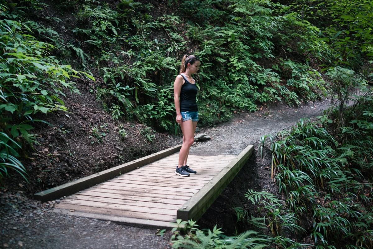 Standing Over a Bridge on Mt. Takao