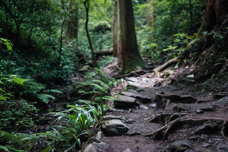 Scenery of Mt. Takao