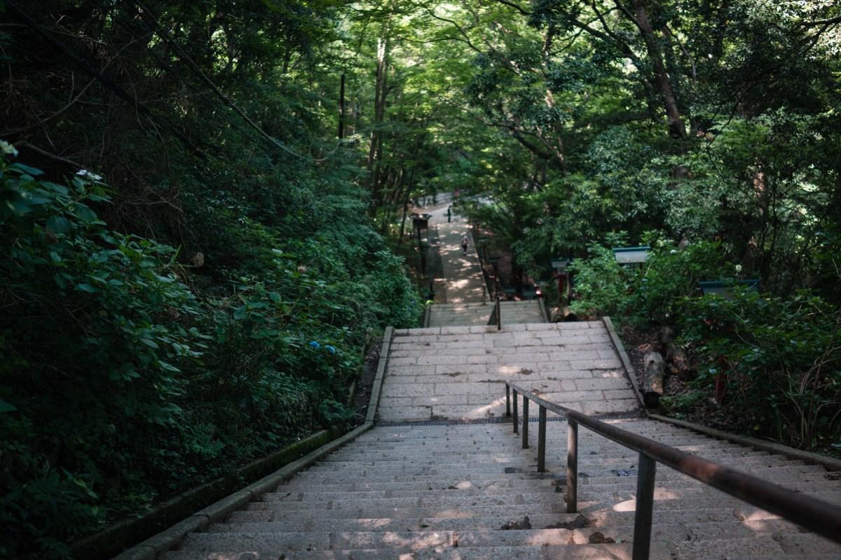 Trail 1 of Mt. Takao