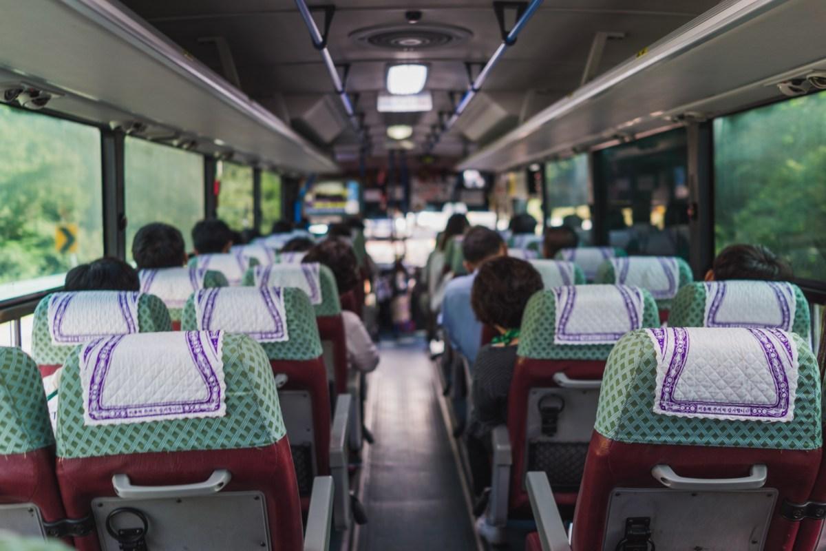 Buses on Jeju Island