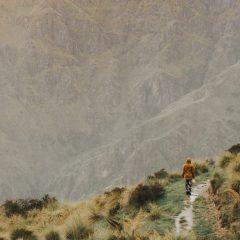 Wanaka Walks