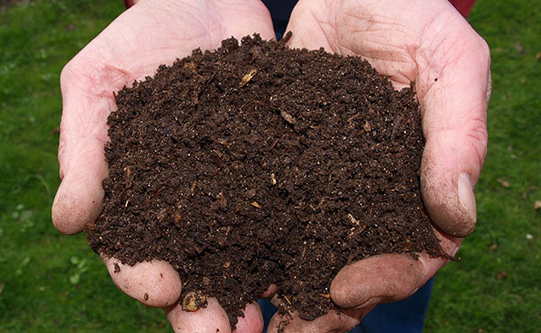 Organic mulch added to soil to reverse and prevent compaction