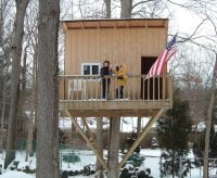 One Tree House Plans