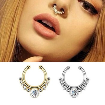 Septum rings are quite big these days