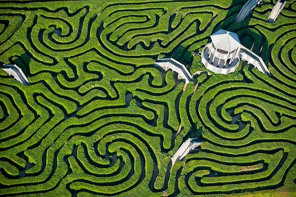 Maze at Longleat, UK