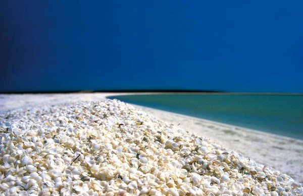 Shell Beach, Shark Bay, Australia
