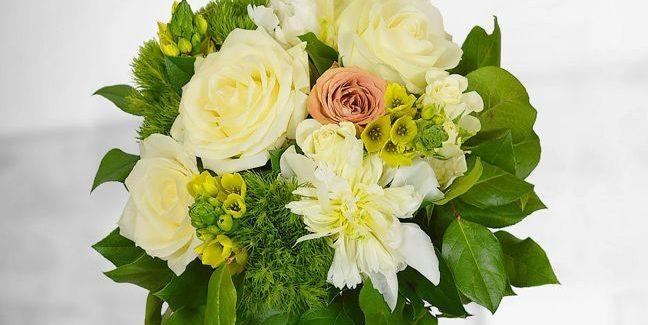 """Noua colecție """"Greenery"""", manifestul Floria pentru natură"""