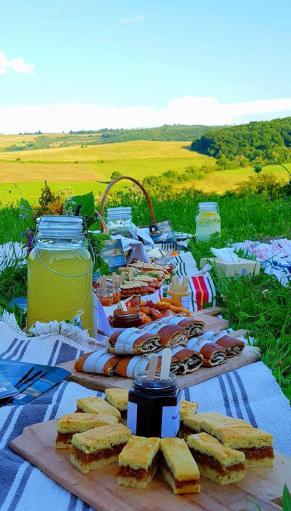 picnic-saptamana haferland