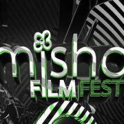 Timishort 2017: peste 80 de scurtmetraje, concerte și proiecții speciale