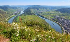 The Moselle Valley8