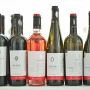 Șapte medalii pentru vinurile semnate Aurelia Visinescu la competițiile din Franța