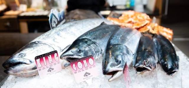 Ce beneficii are peștele sălbatic?