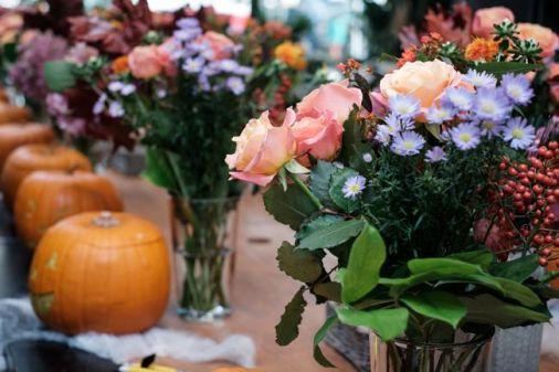 Halloween Floria.ro 2
