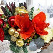 Șampanie și scorțișoară în noua colecție Floria.ro de Crăciun