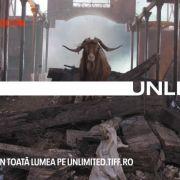 TIFF lansează TIFF Unlimited, platforma de streaming care continuă online experiența festivalului