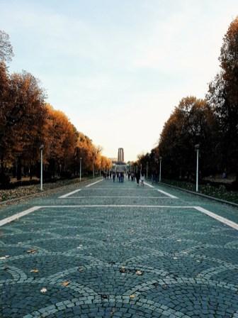 palatul suter parc carol (4)