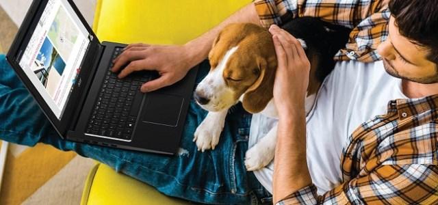 5 sfaturi utile pentru a lucra eficient de acasă