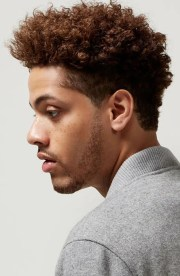 awesome afro hairstyles
