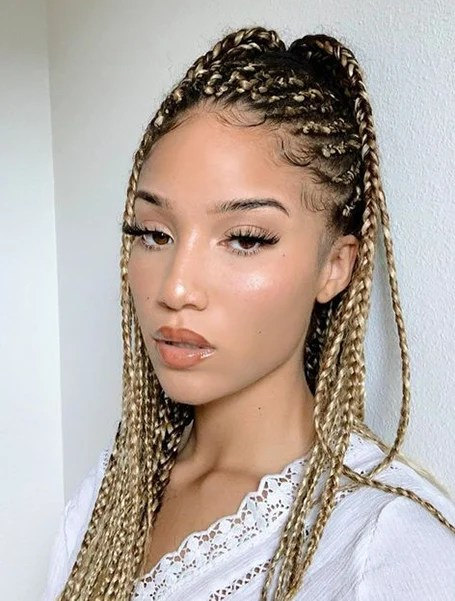 Ombre Knotless Braids