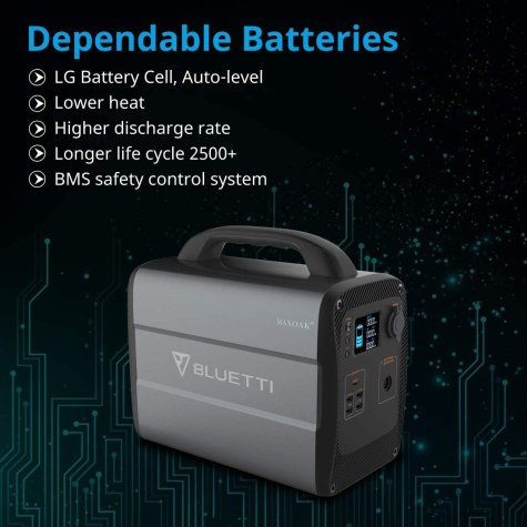 Bluetti AC100 Battery
