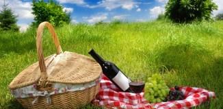 christmas picnic