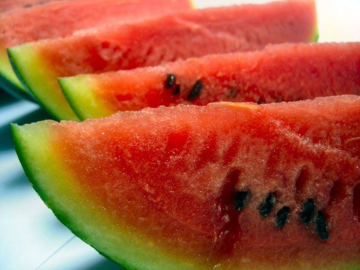 Watermelon The Trent 2