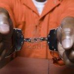 arrested sex slave