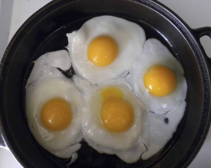 Fried Eggs The Trent