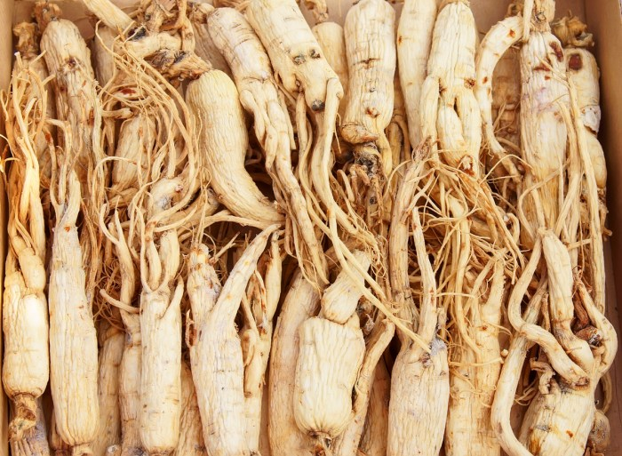 Ginseng The Trent