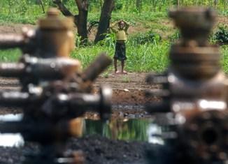 Crude Oil Niger Delta