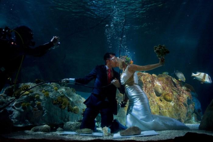 wedding Kiss The Trent 988