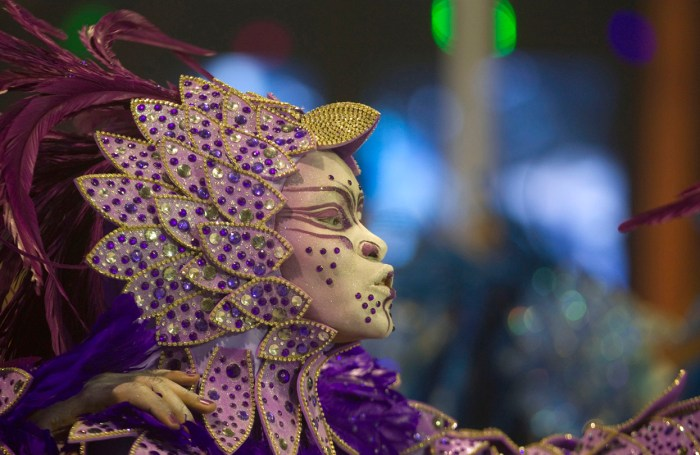 A dancer from the Nene da Vila Matilde samba school during a carnival parade in Sao Paulo, on February 9, 2013. (AP Photo/Andre Penner)