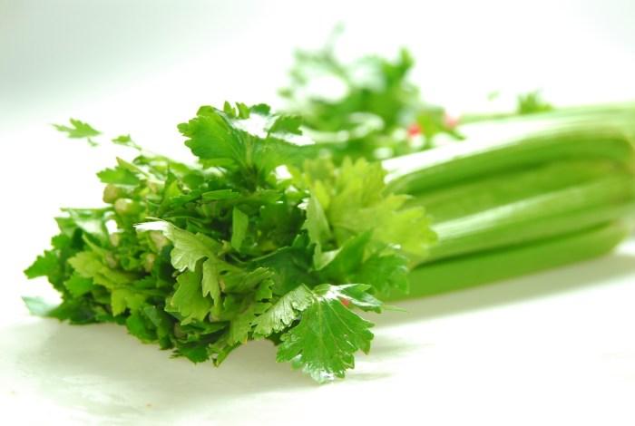 celery the trent