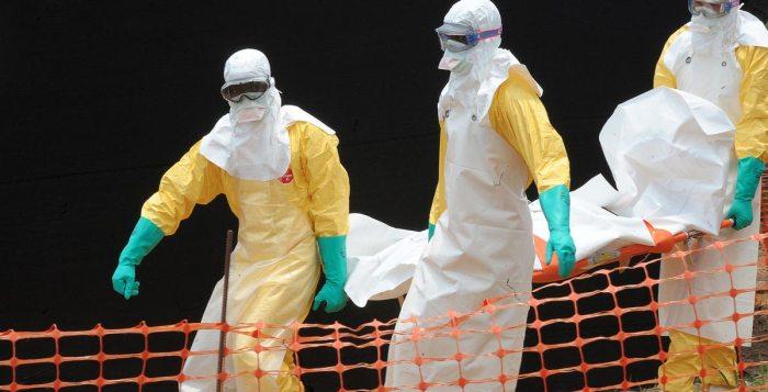 Ebola, Congo, Labouratory